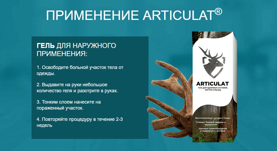 Инструкция по использованию Артикулат