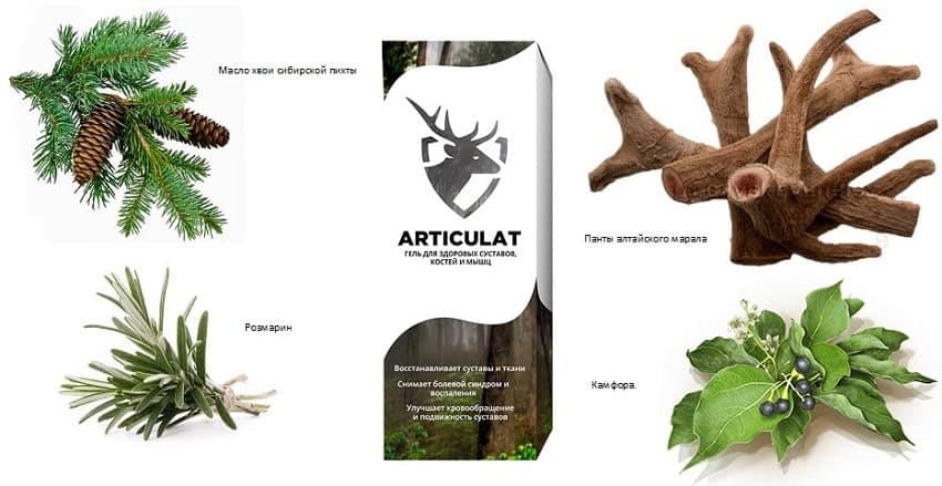 Articulat помогает организму выработать несколько важных компонентов
