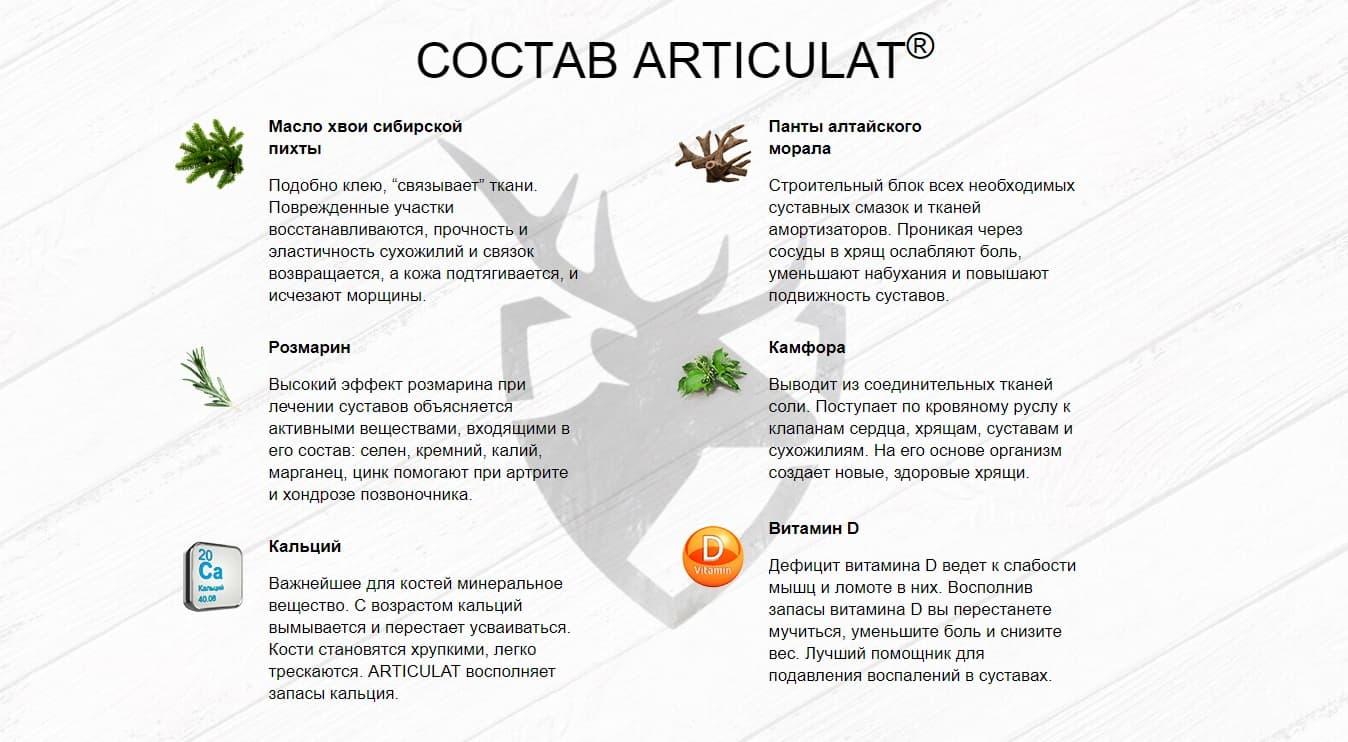 Состав Артикулат